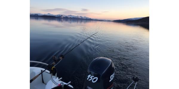 Skärgårdsfiske som företagsevent
